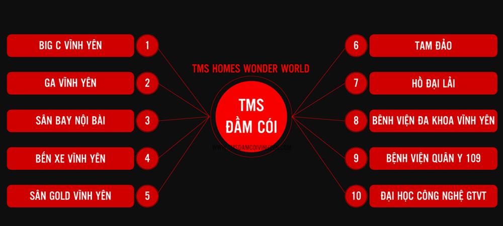 TMS Homes Wonder World